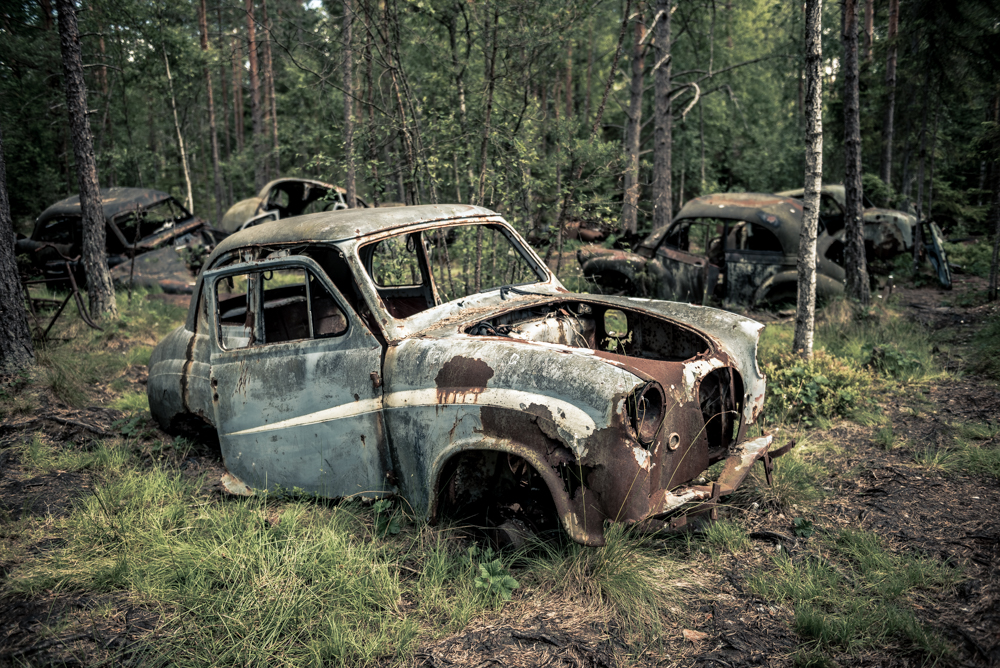 Old rusty cars in the woods at Åke's car park in Ryd