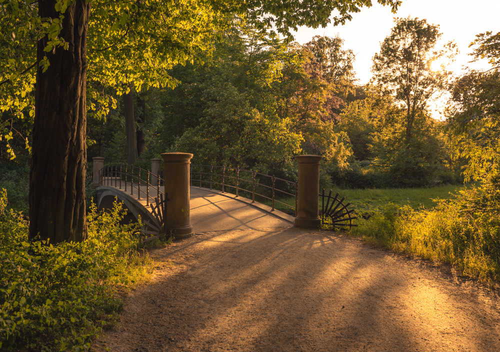 The last rays of the sun are enjoyed at the bridge in the park in the middle of the city