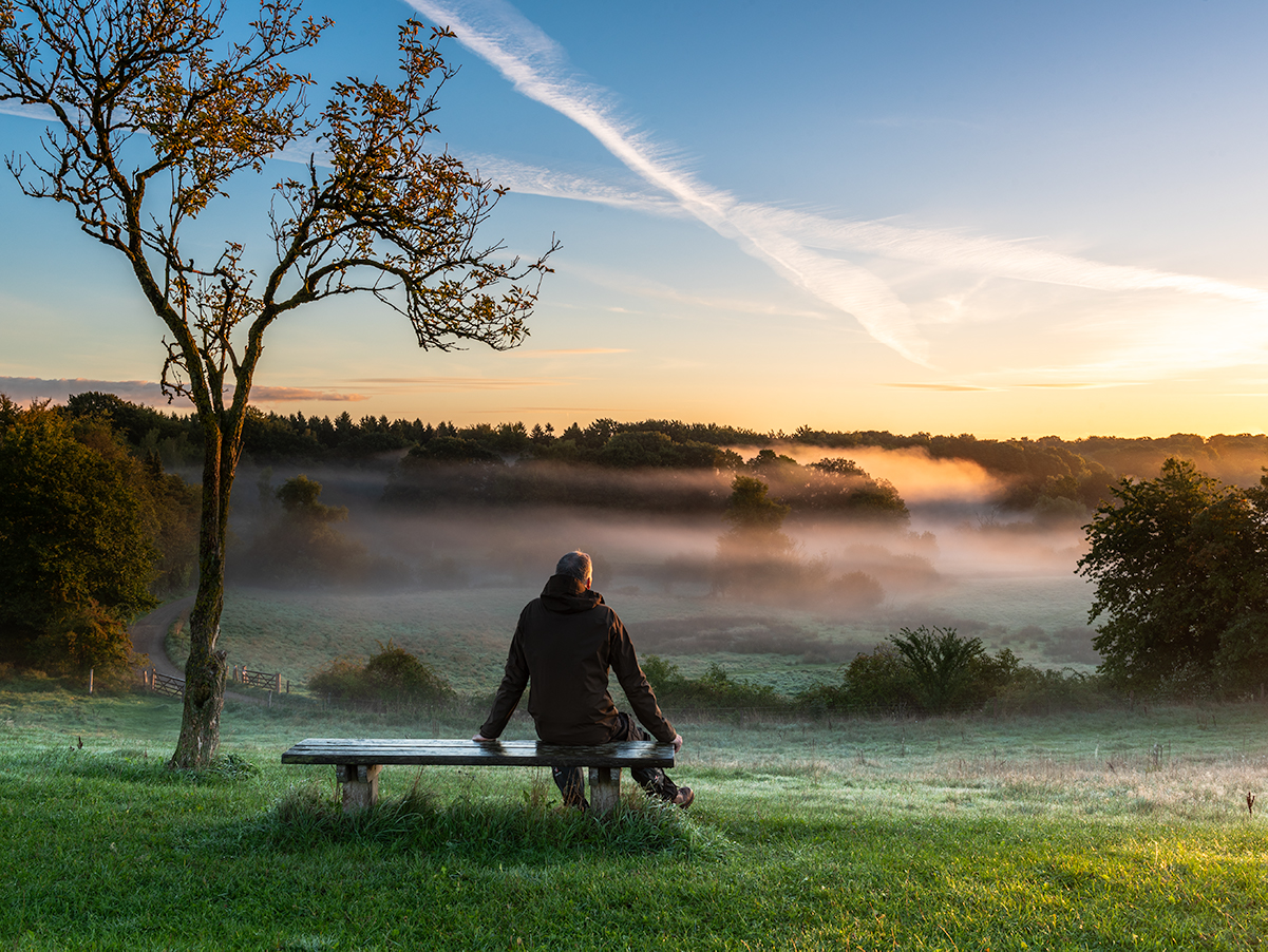 Sitting on the bench and enjoying the sunrise over the meadow