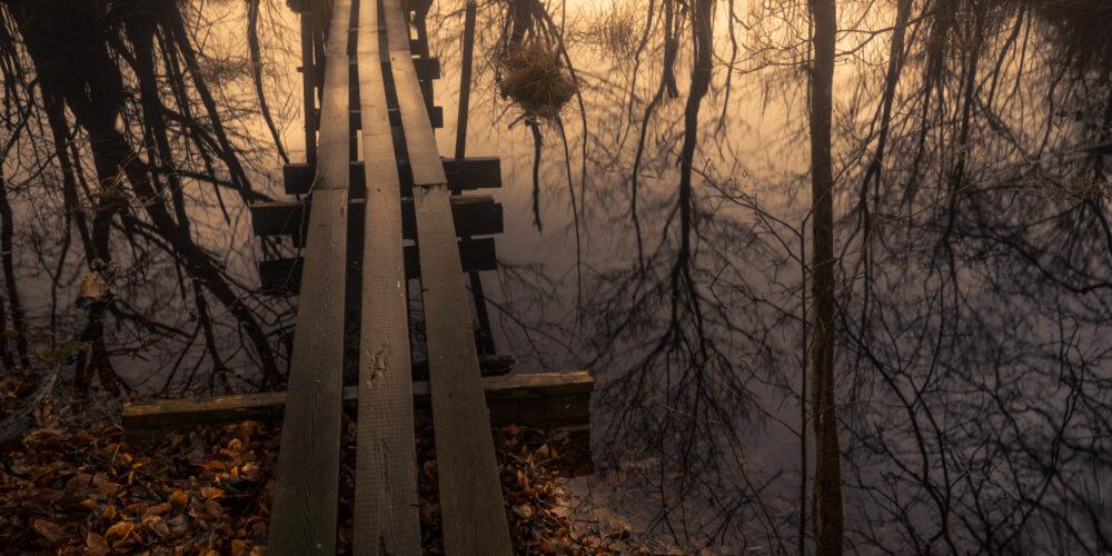 Broen i Hesede skov med reflektioner i søen